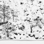 hiver-nb-001