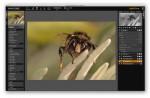 LightZone 3.9.2 sur Mac OS X 10.8.2 : toujours opérationnel, grâce à un petit correctif téléchargé sur le site LightZoneProject. Et ce, même avec certains boîtiers plus récents que la dernière version du logiciel puisqu'il suffit de remplacer l'exécutif de dcraw.
